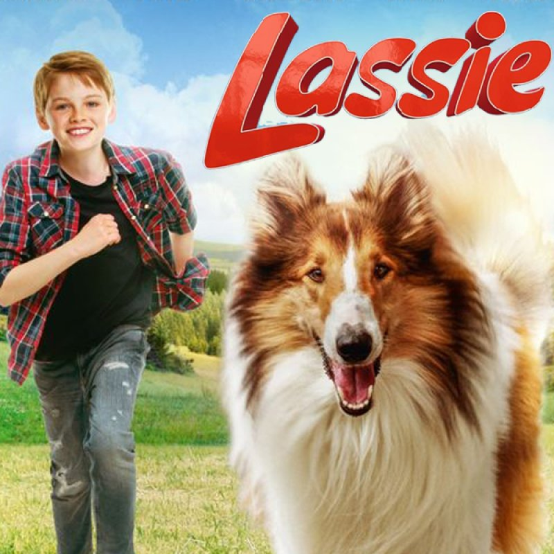Lassie – Eine abenteuerliche Reise ...